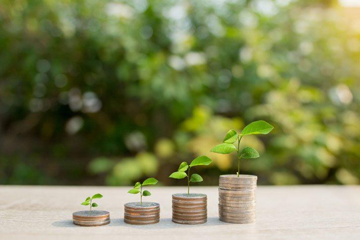 Tax planning - Seldons
